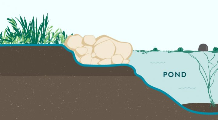 Rock or Stone Edges Pond Treatment